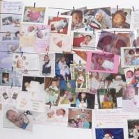 Babybilderwand